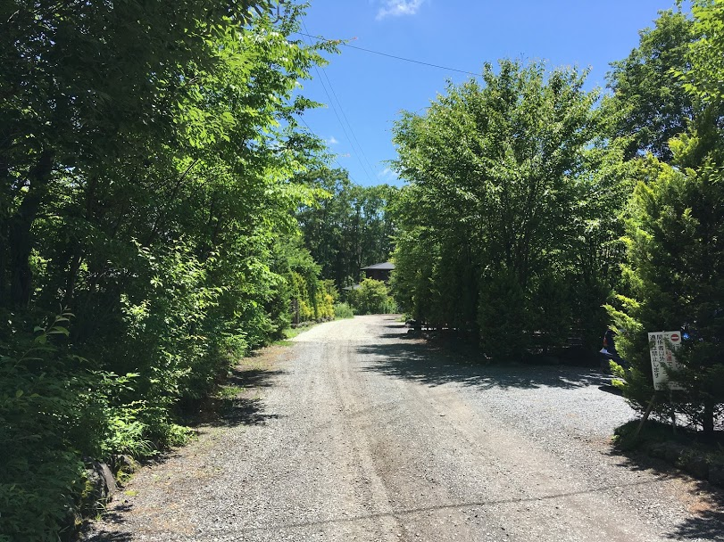 道路(北側から撮影)